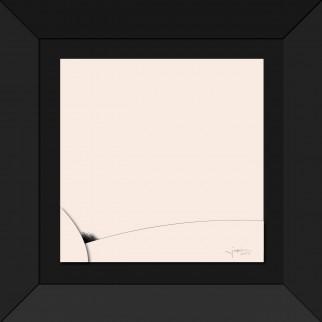 art_anamorphose_feminine_poil-3-ok