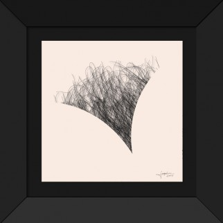 art_anamorphose_feminine_poil-5-effect