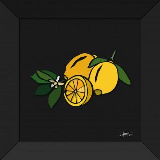 art_nature_vivante_les-citrons