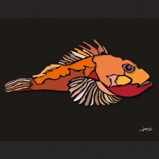 art_poissons_chapon