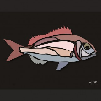 art_poissons_pageot