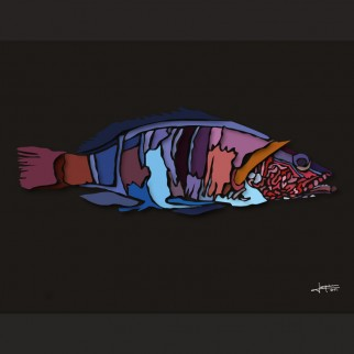 art_poissons_perche