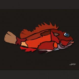 art_poissons_rascasse-rouge