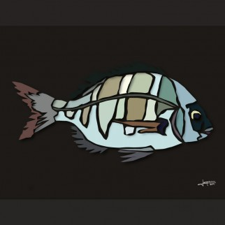 art_poissons_sartambour