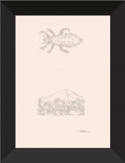 art_rebus_poux-mont